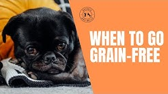 Is it time to go grain free?