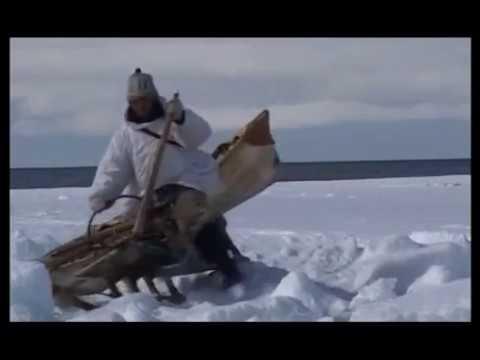 'Охотники студеных берегов'