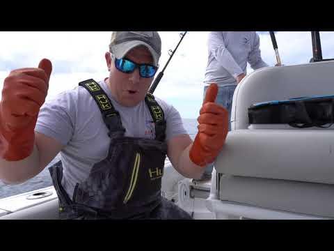 Wahoo Fishing Topsail Island, NC