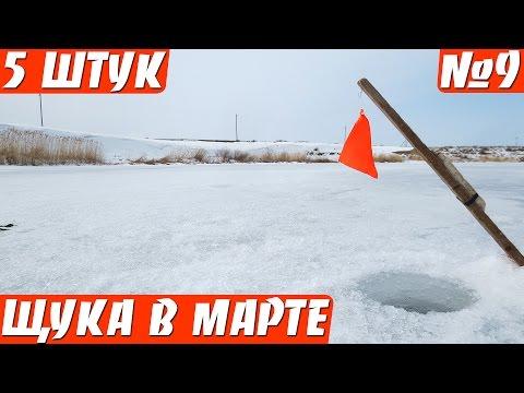 рыбалка по последнему льду на щуку на жерлицы