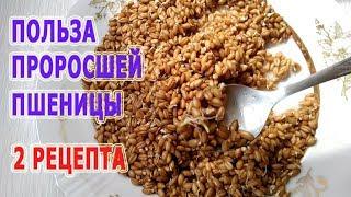 ★ Польза проросшей пшеницы. 2 рецепта приготовления зерна для здоровья.