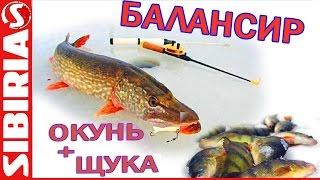 Ловля щуки и окуня на балансир. Секреты ловли на Красноярском водохранилище (Бирюсинский залив)