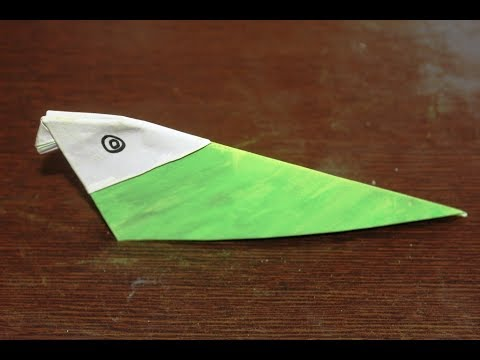 DIY - How to Make a Paper Parrot   Kids Paper Arts and Crafts