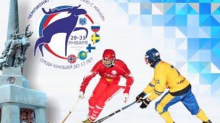 Чемпионат Мира по хоккею с мячом 2016. Стадион