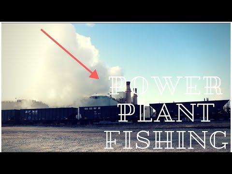 Fishing At A POWER PLANT!