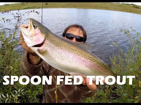 How To Catch Rainbow Trout With Spoon