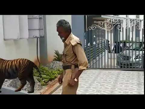 Dr Jyothrmayi Degree College Adoni