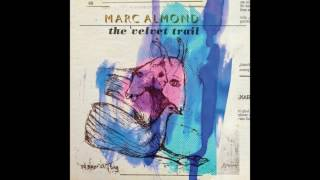 Marc Almond / The Velvet Trail 2015