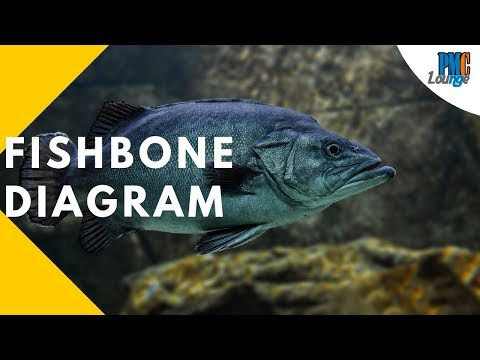 Fishbone Diagram | Cause And Effect | Ishikawa | Herringbone - Seven Basic Quality Tools