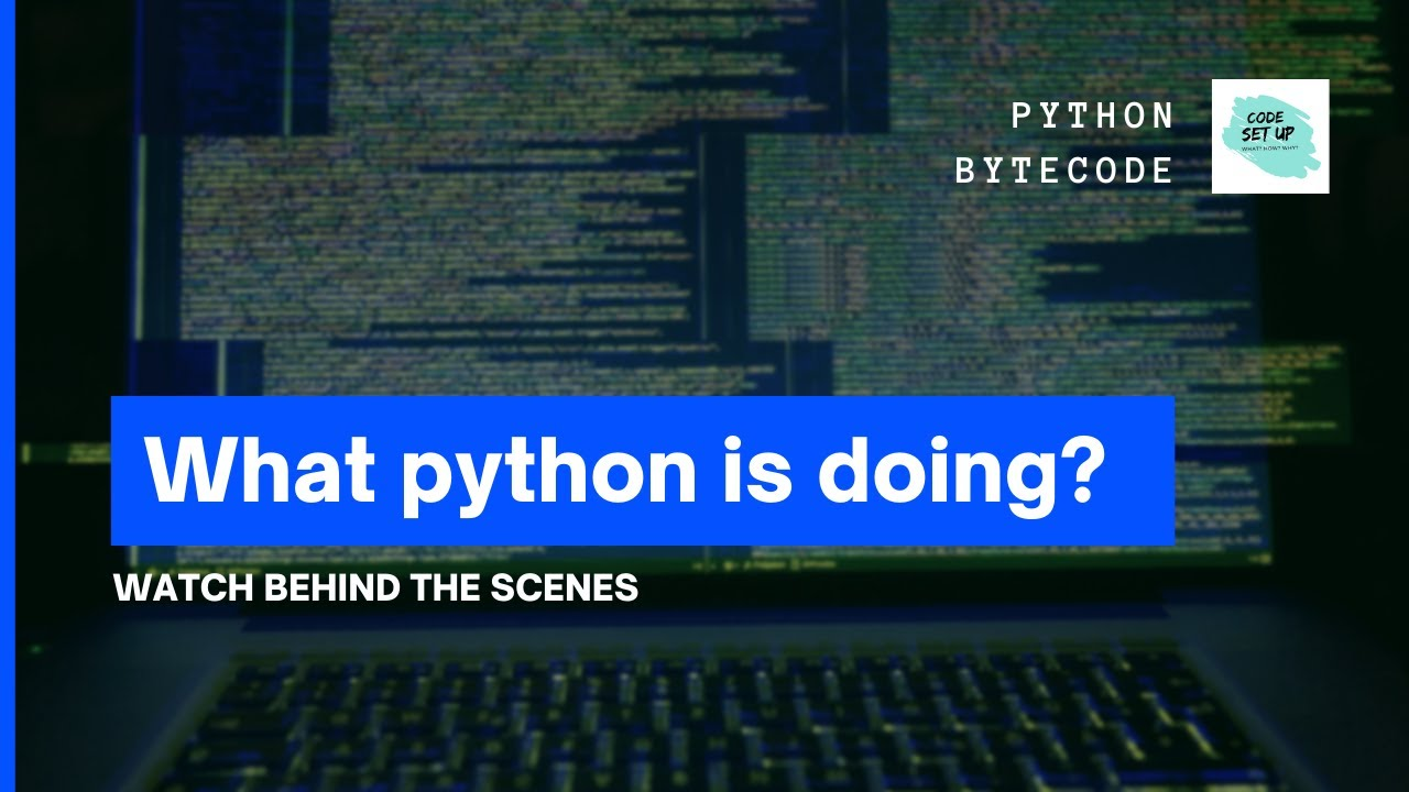 Disassemble the python byte code. Inspect the python code.