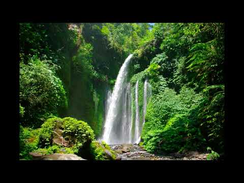 Rimba Kungku 10 Air Terjun Terindah Di Indonesia