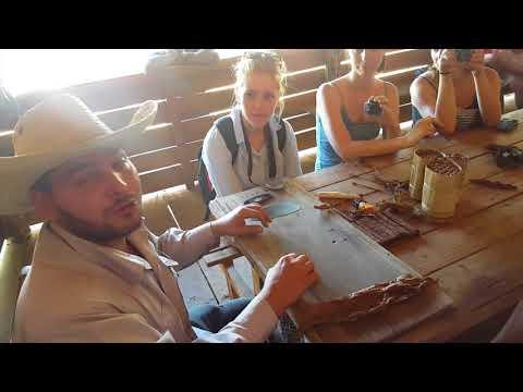 Roll a Traditional Cuban Cigar!