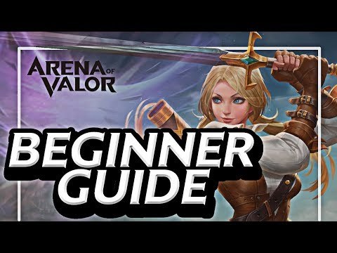 Best Hero for AoV | Purchasing Guide For Beginners | Arena of Valor 🍊