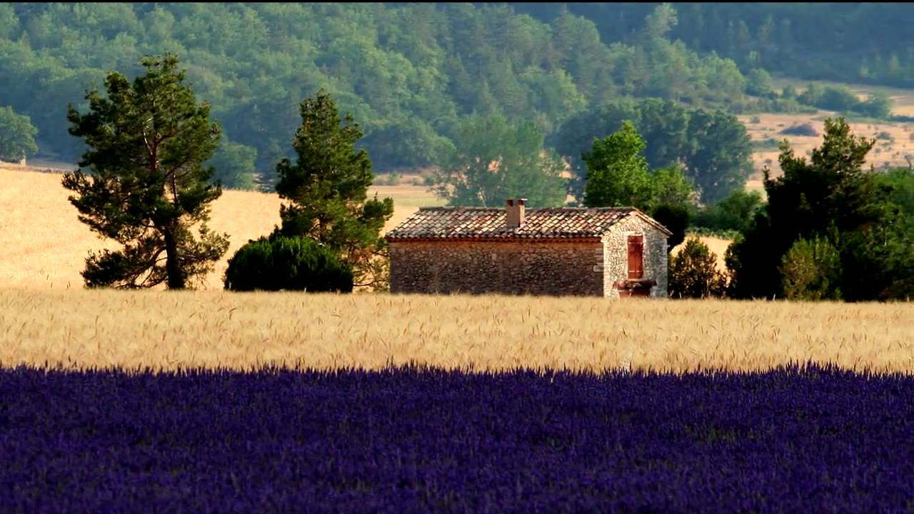 landscapes of provence - les