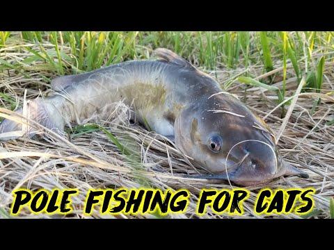First CATFISH Of The Year   Nebraska Fishing 2019