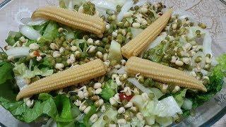 Baklagil Filizlendirme / Asortik Vegan Salata (KYK ve Süslü Sözlük İçerir)