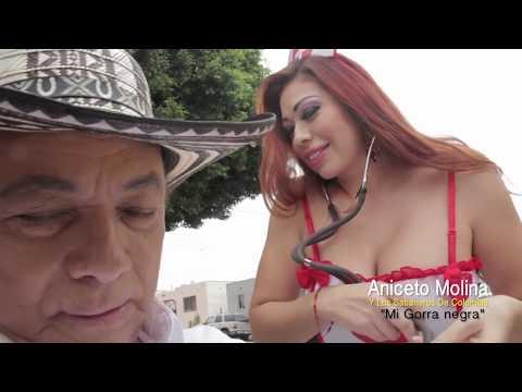 Descargar Mi Gorra Negra - Aniceto Molina Mp3