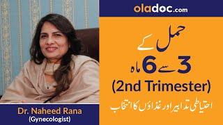 Second Trimester of Pregnancy Tips (Urdu/Hindi) | Hamal ke 3 se 6 maah | Top Gynecologist Tips
