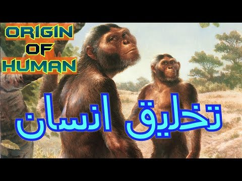 Human Origin - Addis Ababa, Ethiopia Part 9 (Travel Documentary in Urdu Hindi)