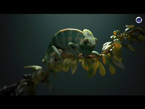 VERSUS: Using Cinema 4D to bring animals alive in still life
