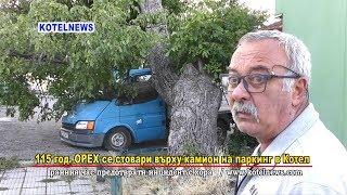 115 г. орех падна върху пикап на паркинг в Котел www.kotelnews.com