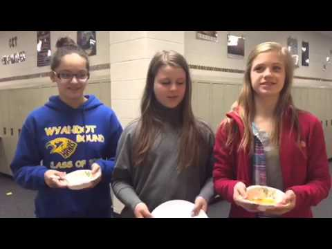 Wyandot middle school// Science Project rock cycle
