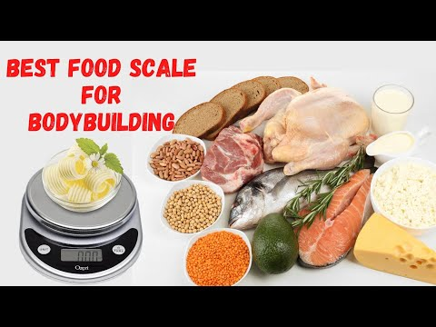 Best Food Scale for Bodybuilding Top 5 Food Scale of 2020