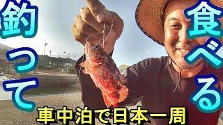 【トイレがある釣り場まとめ】https://uzakituka.com/2017/10/06/25937 ...