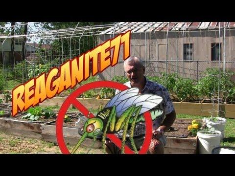 garden pests control