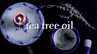 ASMR | All About Essential Oils: Tea Tree