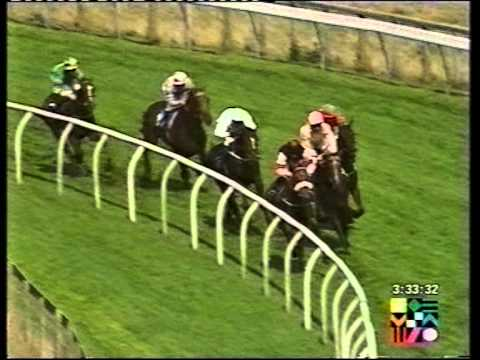 2001 Hull Daily Mail Maiden Stakes