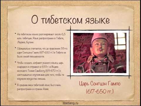 Вопрос: Как с тибетского языка переводится ярсагумба Как она выглядит?