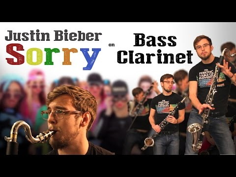 Justin Bieber - Sorry Bass Clarinet Cover