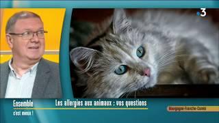 La question des allergies aux poils d'animaux avec un allergologue