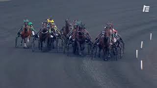 Vidéo de la course PMU PRIX DE COSSE-LE-VIVIEN