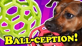 Simple Yet Effective! - DOG TOY REVIEWS   JW Hol-ee Roller Tug & Treat Ball