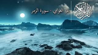 روائع من سورة الزمر | الشيخ عز العوامي