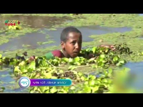 "Ethiopian Music: Yehunie Belay New Single ""Tana"" (ጣናን እንታደግ)"