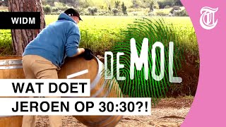 Bizarre hint op tonnen: is dit de Mol?! - WIE IS DE MOL? JUBILEUM HINTS #07