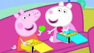Peppa Wutz ⭐ Ein Ausflug mit dem Bus ⭐ Peppa Pig Deutsch Neue Folgen   Cartoons für Kinder