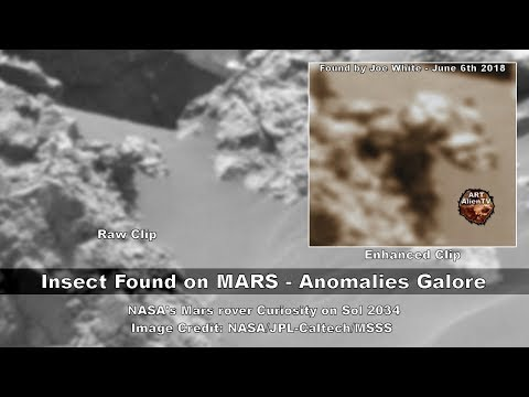 Giant Insect Found on MARS - Anomalies Galore - ArtAlienTV