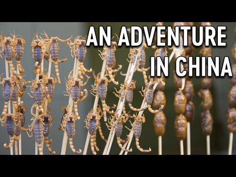 SCORPIONS ON STICKS 🦂| An Adventure in China
