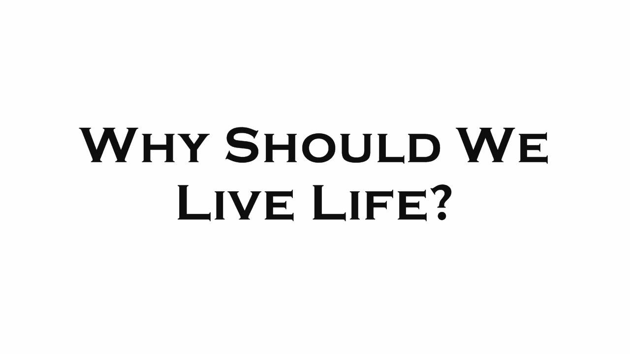 Why Should We Live Life? - YouTube