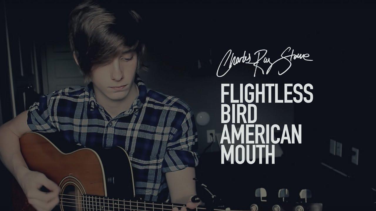 Charles Ray Stone Flightless Bird American Mouth Iron And Wine