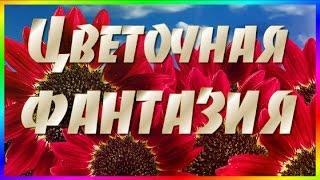 ★►Красивая #музыка и цветочная фантазия для вас,  #друзья! ★►