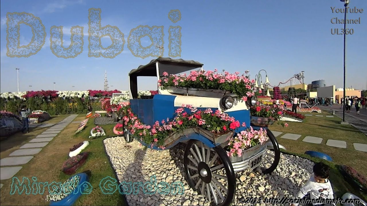 Beautiful Flower Gardens Of The World dubai miracle garden | the most beautiful and largest natural