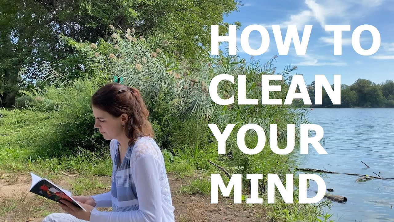 Plainview Meditation Lecture - How To Clean Your Mind