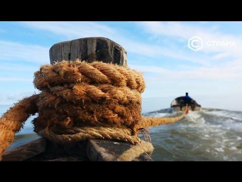 Видео — Белое море. Природа. Телеканал «Страна»