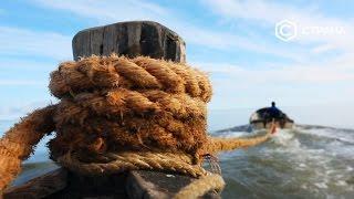 видео Белое море