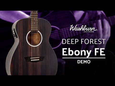 Washburn Deep Forest Ebony FE Demo